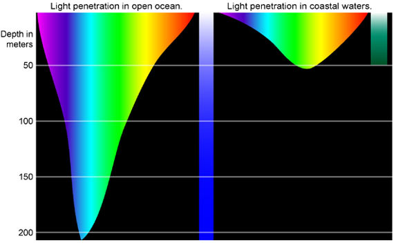 NOAA Deep Light Diagram