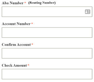myIcareLabs eCheck Account Info And Payment Amount